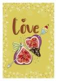 Higos en amor con la magdalena Imagen de archivo