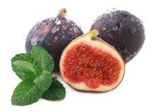 Higos maduros de la fruta en blanco Imagenes de archivo