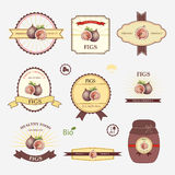 Higos, sistema del diseño de la etiqueta Foto de archivo
