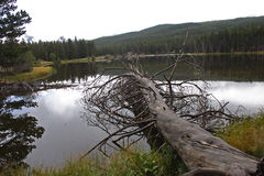 hihg μικρό tatra βουνών λιμνών Στοκ Εικόνα