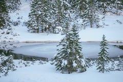 hihg μικρό tatra βουνών λιμνών Στοκ φωτογραφία με δικαίωμα ελεύθερης χρήσης