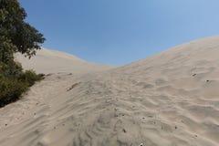hij Huacachina-Oase stock foto