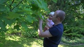Hija curiosa del bebé del control joven del papá cerca del árbol de tulipán en parque 4K almacen de video