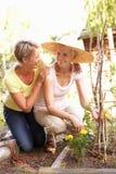 Hija mayor de la mujer y del adulto que se relaja en jardín Foto de archivo