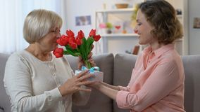 Hija que cuida que da las flores y la caja de regalo para mimar el 8 de marzo, amor de la familia metrajes