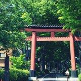 Hikawa寺庙 免版税库存照片