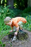 On a hike. Toddler pauses while on a hike to play on a stump stock image