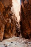 The Narrows hike at Zion National Park, Utah, USA royalty free stock images