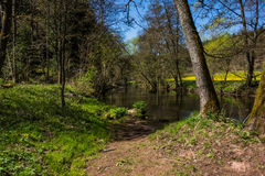 A hike in Altensteig, in the northern black forrest in the early spring. Along the river Nagold Royalty Free Stock Photography