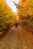Hike in Autumn stock photo