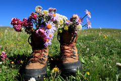 Hike boots with beautiful flowers royalty free stock image
