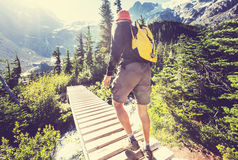 Hike in Canada. Hiking man in Canadian mountains. Hike is the popular recreation activity in North America. There are a lot of picturesque trails Stock Image