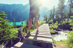 Hike in Canada. Hiking man in Canadian mountains. Hike is the popular recreation activity in North America. There are a lot of picturesque trails Royalty Free Stock Photography