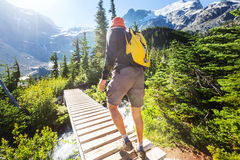 Hike in Canada. Hiking man in Canadian mountains. Hike is the popular recreation activity in North America. There are a lot of picturesque trails Royalty Free Stock Photos
