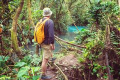 Hike in Costa Rica Royalty Free Stock Photos