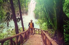 Hike in Costa Rica stock photo