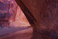 Hike in Coyote gulch Royalty Free Stock Photo