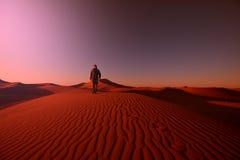 Hike in desert Royalty Free Stock Photos