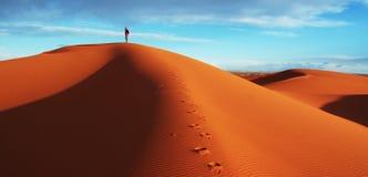 Hike in the desert. Hike in sand desert Sahara royalty free stock image