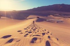 Hike in desert Stock Images