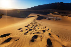 Hike in desert. Hiker in sand desert. Sunrise time Royalty Free Stock Photography