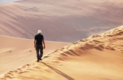 Hike in desert Royalty Free Stock Images