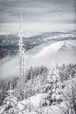 Hike do inverno Imagens de Stock