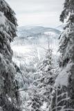 Hike do inverno Foto de Stock Royalty Free