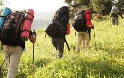 Hike do verão Foto de Stock Royalty Free