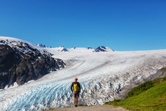Hike in Exit glacier Royalty Free Stock Images