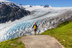 Hike in Exit glacier Royalty Free Stock Photos