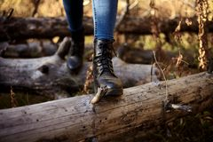 Hike on fallen logs stock images
