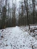 Hike in the forest. Winter hike in the forest in pa Royalty Free Stock Image