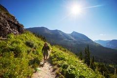 Hike in Glacier Royalty Free Stock Photo