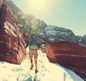 Hike in Glacier Stock Photo
