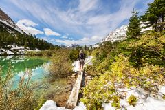 Hike in Glacier Royalty Free Stock Photography