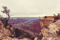 Hike in Grand Canyon Royalty Free Stock Images