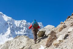 Hike in Himalayas. Hiker in Himalayas mountain. Nepal Stock Image