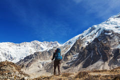 Hike in Himalayas Stock Photo