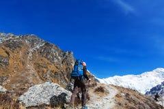 Hike in Himalayas Stock Image