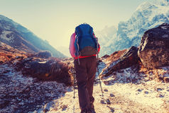 Hike in Himalayas Royalty Free Stock Image