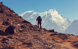 Hike in Himalayas. Hiker in Himalayas mountain. Nepal Royalty Free Stock Images