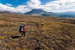 Hike in Kamchatka valley. royalty free stock photo