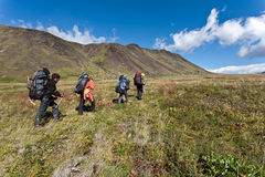Hike in Kamchatka valley. Royalty Free Stock Image