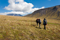 Hike in Kamchatka valley. stock image
