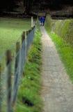 Hike longo do campo Imagem de Stock Royalty Free