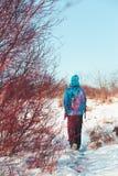 Hike through meadows in the wintertime Stock Photos
