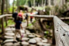 Hike nas montanhas Imagem de Stock