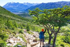Hike in Patagonia Royalty Free Stock Photos