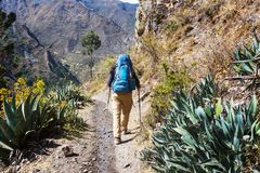 Hike in Peru Stock Images